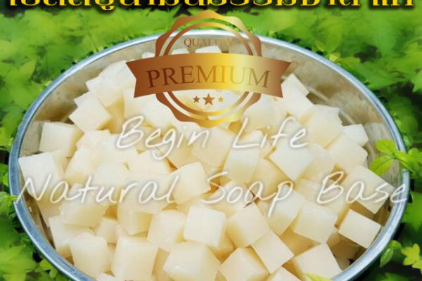 natural-soap-beginlife5CCCB628-AE51-EBF8-DD5A-01F63CB283A7.png